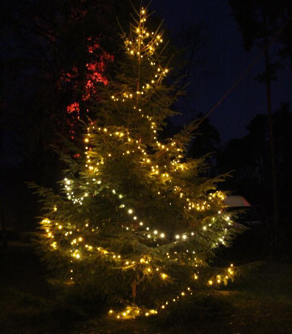 Weihnachtszauber am Tankumsee