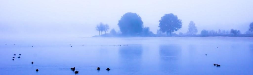 Nebel am Tankumsee - Lernen ist Erinnern - Telse Maria Kähler