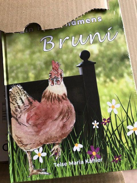 Ein Huhn namens Bruni - Kinderbuch